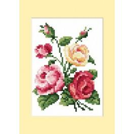 Narozeninová karta - Barevné růže - B. Sikora - Předloha