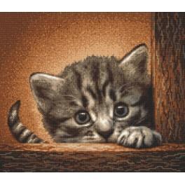 Předloha on line - Kotě na žebříku