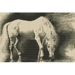 Bílý kůň - Předtištěná kanava