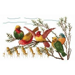 Ptačí klepy - Předtištěná kanava