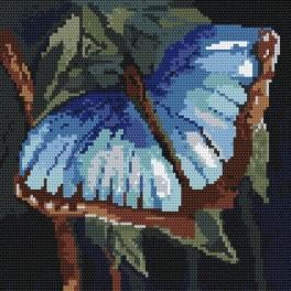 Modrásek - Předtištěná kanava