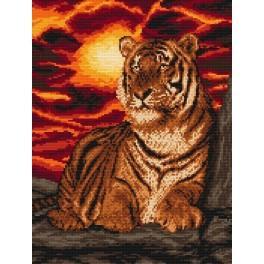 Tygr - Předtištěná kanava