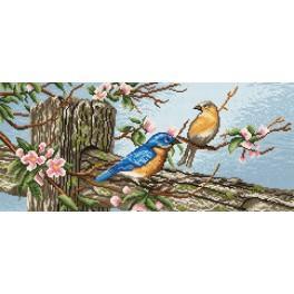 Ptáčci - Předtištěná kanava