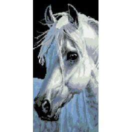 Kůň - Předtištěná kanava