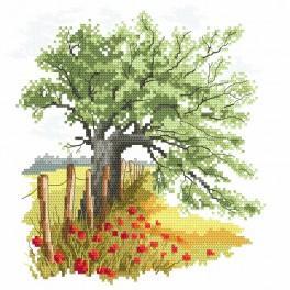 Předtištěná kanava - Tajemství starého dubu