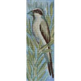 Předloha online - Ptáček v křoví