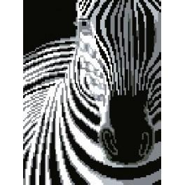 GC 1122 Zebra - Předloha