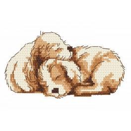 GC 8336 Dva malí psi - Předloha