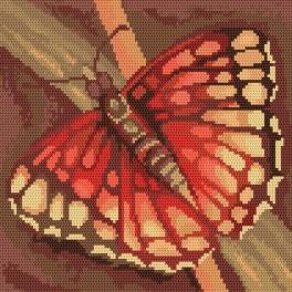 Motýl - Předtištěná kanava