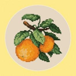 Sladké pomeranče - B. Sikora-Malyjurek - Předtištěná aida