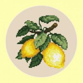 AN 4677 Chutné citrony - B. Sikora-Malyjurek - Předtištěná aida