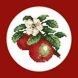 Šťavnaté jablka - B. Sikora-Malyjurek - Předtištěná aida