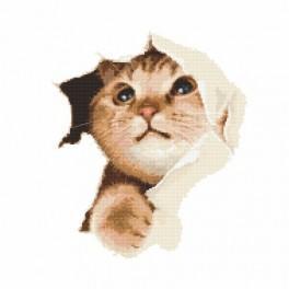 Hravé koťátko - Předtištěná aida