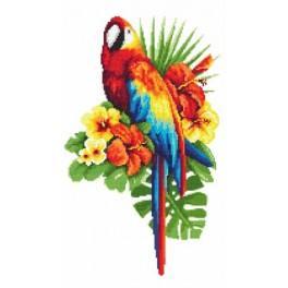 Pohádkový papoušek - Předtištěná aida