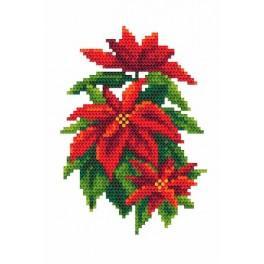Vánoční hvězda - Předtištěná aida