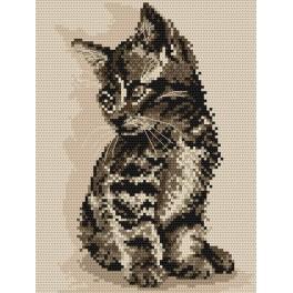 Kočka - Předtištěná aida