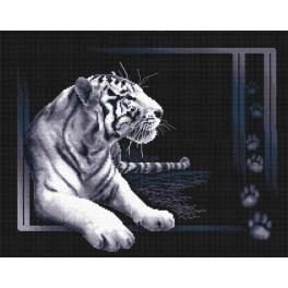 PAJ 0277 Vyšívací sada - Bílý tygr