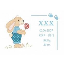 Vyšívací sada - Potisk se zajíčkem