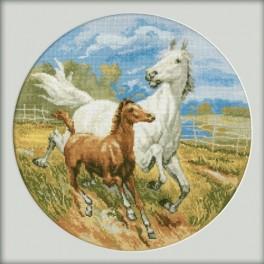 ZTM 217 Vyšívací sada - Koně