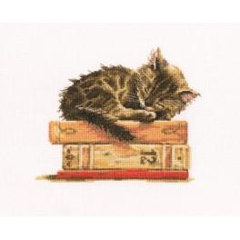 Vyšívací sada - Sen kočka