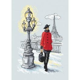 Vyšívací sada s mulinkou a podiskem - Pařížská elegance
