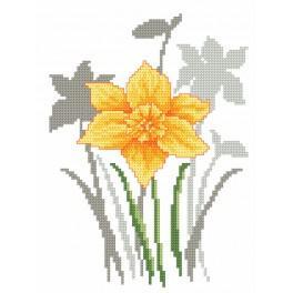 Vyšívací sada s mulinkou a podiskem - Jarní květiny - Narcisy