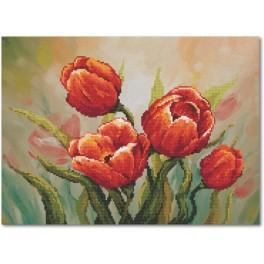 Důstojné tulipány - B.Sikora-Malyjurek - Aida s pozadím