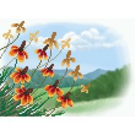 Podzimní květý - Aida s pozadím