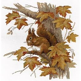 Zestaw z muliną - Wiewiórka