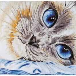 Sada s mulinky - Safírové oči