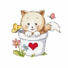 Předtištěná aida - Koťátko v květináči