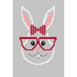 Předloha - Přání - Hipster rabbit girl