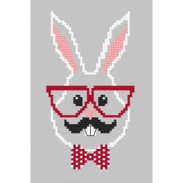 Předloha on line - Přání - Hipster rabbit boy