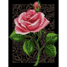 Předtištěná kanava - Růže