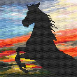 K 4382 Předtištěná kanava - Divoký hřebec