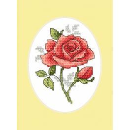 Předloha - Pohlednice - Růže