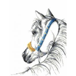 Vyšívací sada s mulinkou a podiskem - Arabský kůň
