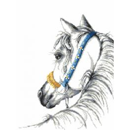 Předtištěná kanava - Arabský kůň