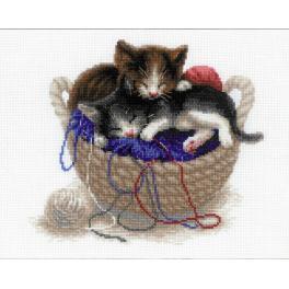 Sad s akrylovou příze - Koťátka v košíku