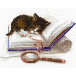 Sad s akrylovou příze - Koťátko a knížka