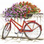 Předloha - In bicicletta per tutta l'estate