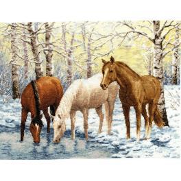 Vyšívací sada - Koně nad řekou