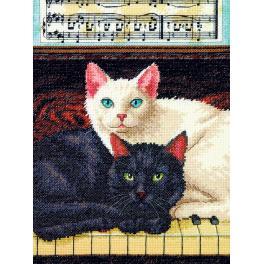 Vyšívací sada - Černá a bílá kočka