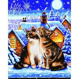 Diamond painting sada - Kočky pod hvězdami