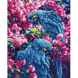 Diamond painting sada - Modří papoušci