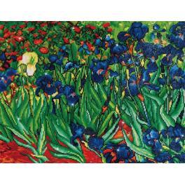 Diamond painting sada - Kosatce - V.van Gogh