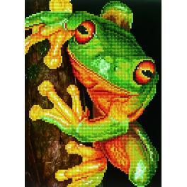 Diamond painting sada - Zelená žába stromová