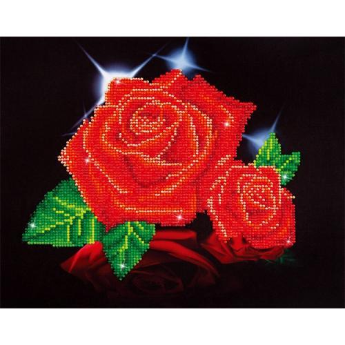 DD5.002 Diamond painting sada - Lesk červené růže