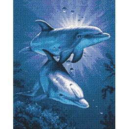 Diamond painting sada - Delfíní rande