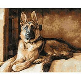 Diamond painting sada - Pastevecký pes